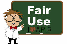 Fair use Java APIs