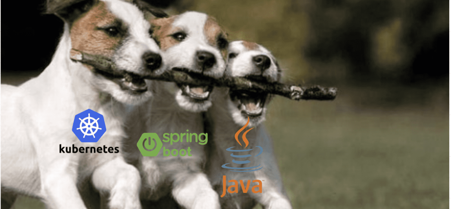 The Java Daily 8/4/20